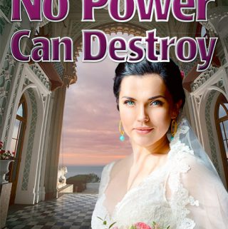 Romance novel cover for No Power Can Destroy by Dan Coggins, Pitchgreen Communications